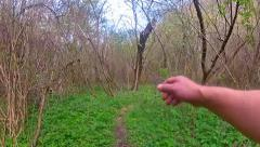 Walking through lianas in forest path pov Stock Footage