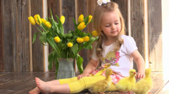 Little girl touch and stroke yellow ducklings on a background of flowers Stock Footage