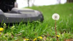 Super slow motion of single dandelion being mowed Stock Footage