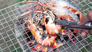 Stock Video Footage of delicious shrimps on grill with flames in background