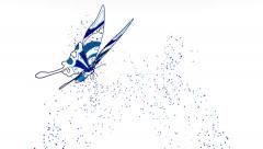 Blue Butterfly Drawing and Flying (HD) - stock footage