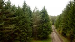 Flight over the forest road stock footage, aerial view Stock Footage