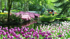 Tourists in the park Keukenhof, also known as the Garden of Europe. Stock Footage