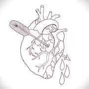 Anatomical heart with arrow Stock Illustration