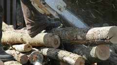 Woodcutter working in a forest. - stock footage