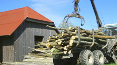 -Tractor for export of timber logs unload them. Stock Footage
