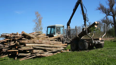 Tractor for export of timber logs unload them. - stock footage