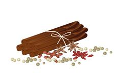Dried Star Anise with Cinnamon Sticks and Peppercorns - stock illustration