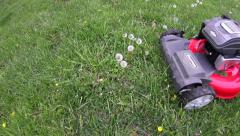 Overhead POV of mowing dandelions and grass Stock Footage