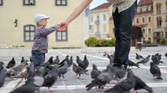 Sweet boy take seed from father hand to feed pigeons Stock Footage