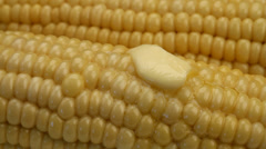 Fresh Buttered Corn On the Cob - stock footage