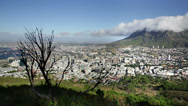 Stock Video Footage of Cape Town city view from Signal hill