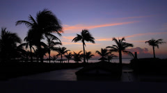 postcard -palm tree siloheuttes - turks and caicos - stock footage