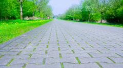 Road a stone blocks Stock Footage