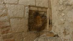 4K UHD Imprint of Jesus hand in Via Dolorosa in Old City Jerusalem Stock Footage