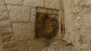 Stock Video Footage of 4K UHD Archaeological artifact in Via Dolorosa in Old City Jerusalem