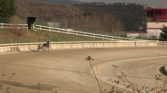 Horses training in hippodrome - stock footage