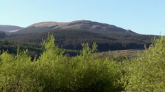 GALLOWAY FOREST PARK , SCOTLAND Stock Footage