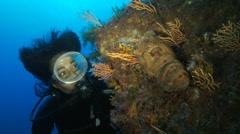 Underwater footage diver crustacean Scyllaridae corsica corse mediterranean - stock footage