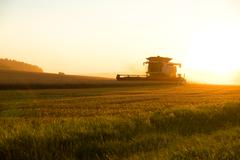 Harvest in the sunset... Stock Photos