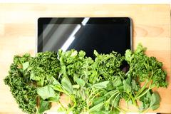 Herbal tablet pc.. Stock Photos