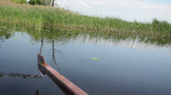 Stock Video Footage of view from the boat long green water bulrush