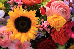 Mixed bouquet in bright colors Stock Photos