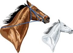 Two horse heads Stock Illustration