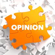 Opinion on Orange Puzzle. - stock illustration