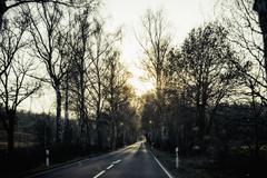 Germany, Mecklenburg/Western Pomerania, Ruegen, empty country road at sunset in Kuvituskuvat