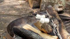 Marshmallows Roasting on a Campfire (Slow Pan) Stock Footage