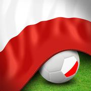 Soccer ball and flag euro poland Stock Illustration