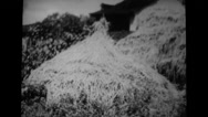 A military soldier practising haystack camouflage Stock Footage