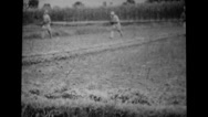 Military soldiers running and taking positions during training Stock Footage