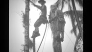 Soldiers laying cables while suspended on a cable Stock Footage