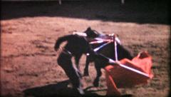 1081 - matador in arena with bull - vintage film home movie Stock Footage