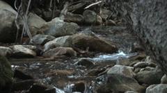Great Basin Mountain Stream Stock Footage