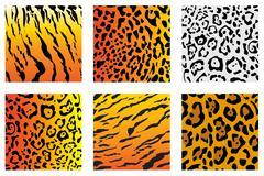 wildcat fut - stock illustration