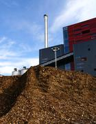 bio power plant with storage of wooden fuel - stock photo