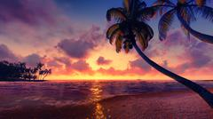 Coconut palms silhouettes at sunset - stock photo