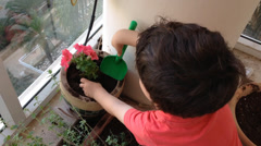 boy panting plant on a balcony - stock footage