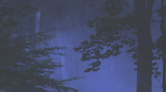 Mystic Foggy Glade In A Beech Forest Stock Footage