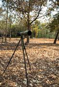 A digital camera with zoom lens on tripon in the forest Stock Photos