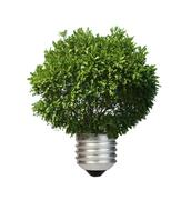 Lamp made ​​of green tree. Ecology conception - stock illustration