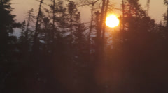 Sunrise over tundra out of train through trees Stock Footage