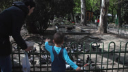 Stock Video Footage of Mother and son feeding hungry pigeons, doves eat seeds in the park