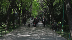 Young and old people walking on a park alley, spring day, green foliage Stock Footage