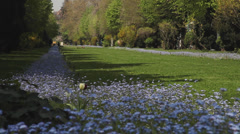 Wonderful lawn, greensward in sunny spring day, blue flowerbed, trees, park Stock Footage