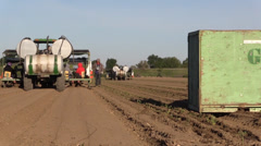 California Agriculture, Vegetable crops, approaching tractor Stock Footage
