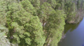 Spring n wood and river . Aerial  view HD Footage